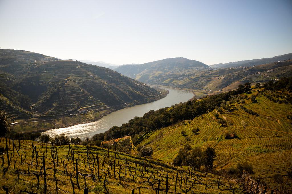 Guides des vins du Portugal avec la région viticole de la vallée du Douro