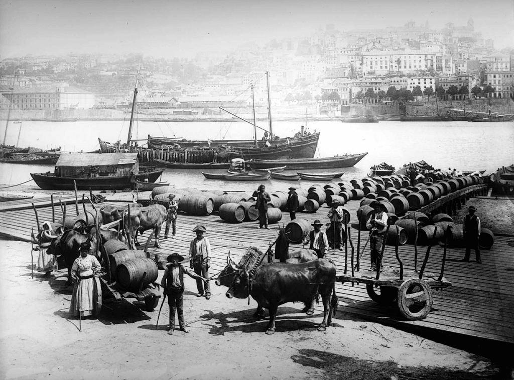 Histoire des vins du Portugal et de leur export à l'international