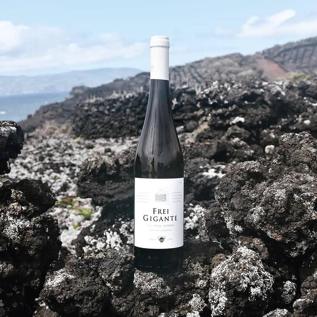 Le guides des vins portugais avec le vin de Pico de l'archipel des Açores.