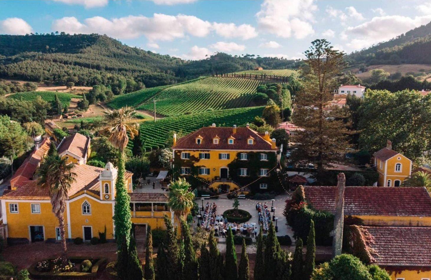 Visite privée exclusive d'un vignoble de la région de lisbonne pour déguster des vins portugais de lisbonne