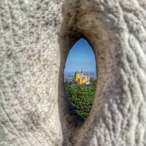 palais de la pena, palais celebre de sintra vu depuis les hauteurs du massif forestier