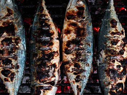 saint antoine lisbonne sardines