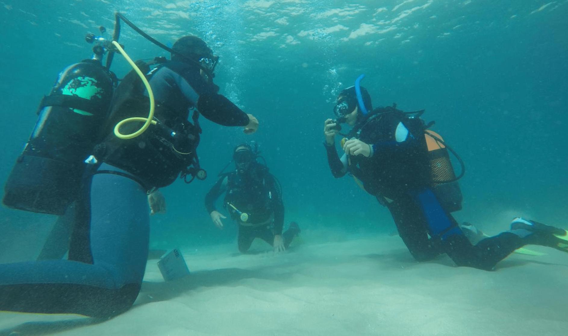 Excursion plongée sous-marine pour plongeurs débutants.